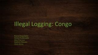 Illegal Logging: Congo