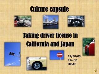 Culture capsule