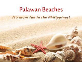 Palawan Beaches