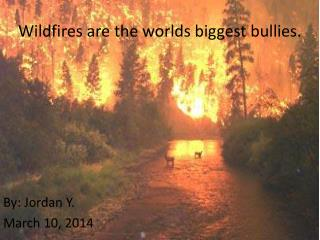 Wildfires are the worlds biggest bullies.