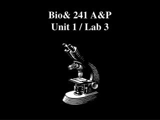 Bio& 241 A&P  Unit 1 / Lab 3