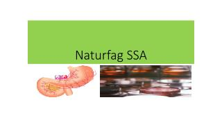 Naturfag SSA