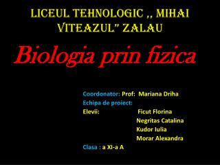 "Liceul Tehnologic  ,,  Mihai Viteazul ""  Zalau"