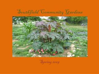 Southfield Community Gardens