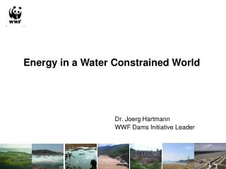 Dr. Joerg Hartmann WWF Dams Initiative Leader