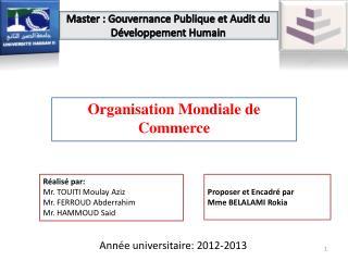 Master  :  Gouvernance Publique et Audit du Développement Humain