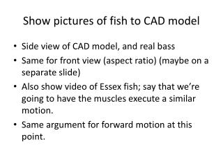 Show pictures of fish to CAD model