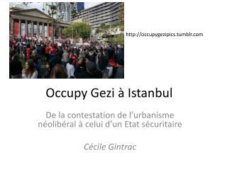 Occupy Gezi  à Istanbul