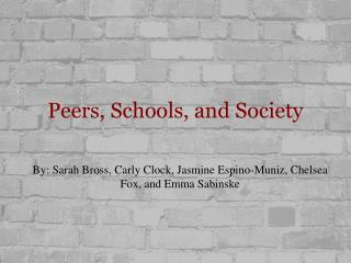 Peers, Schools, and Society