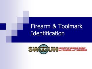 Firearm  Toolmark Identification