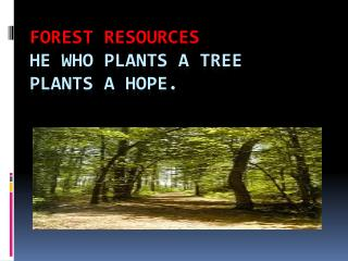 Forest resources He who plants a tree plants a hope.