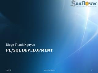 PL/SQL Development