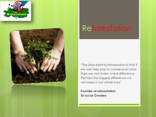 Re forestation