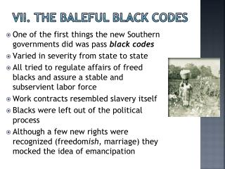VII. The Baleful Black Codes