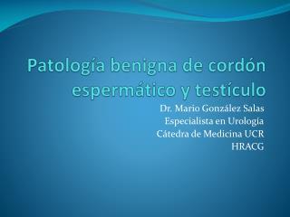 Patología benigna de cordón espermático y testículo