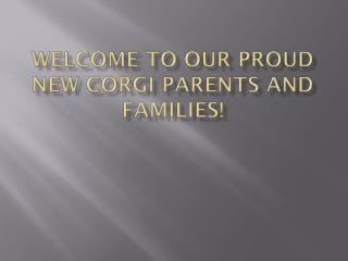 WELCOME TO OUR PROUD  NEW CORGI PARENTS AND FAMILIES!