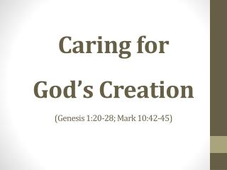 Caring for  God's Creation (Genesis  1:20-28; Mark  10:42-45)