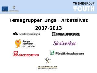 Temagruppen Unga i Arbetslivet 2007-2013