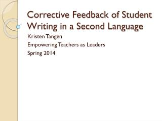 Corrective Feedback of Student Writing in a Second Language