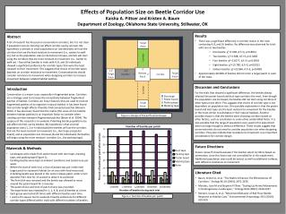 Effects of  Population Size  on  Beetle Corridor Use Kaisha A.  Pittser and Kristen A. Baum