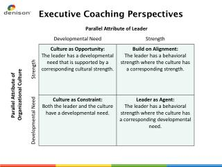 Executive Coaching Perspectives