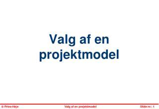 Valg af en projektmodel