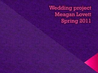 Wedding project Meagan Lovett Spring 2011