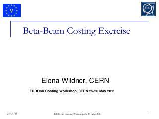 Beta-Beam Costing Exercise