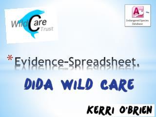 Evidence-Spreadsheet.