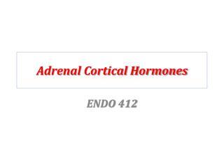 Adrenal Cortical Hormones