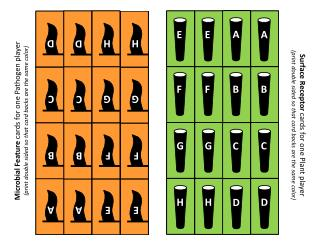 Vegevaders CardsWithBacks