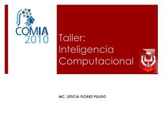 Taller: Inteligencia Computacional
