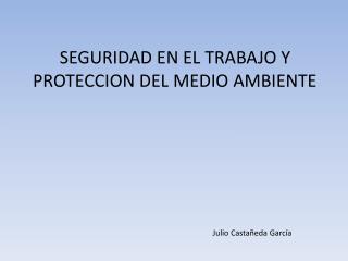 SEGURIDAD EN EL TRABAJO Y PROTECCION DEL MEDIO AMBIENTE