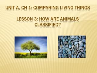 Unit A, Ch 1: Comparing  Living Things Lesson  3 :  How are animals classified?