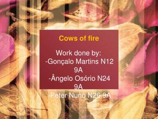 Cows of fire