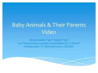 Baby Animals & Their Parents Video