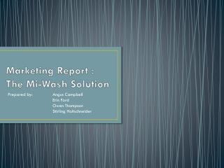 Marketing Report : The  Mi -Wash Solution