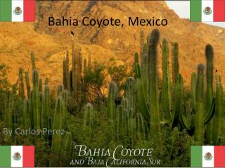 Bahia Coyote, Mexico