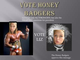 VOTE HONEY BADGERS