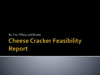 Cheese Cracker Feasibility Report