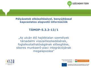 Pályázatok elkészítésével, benyújtással kapcsolatos alapvető információk TÁMOP-5.3.3-13/1