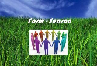 Farm  -  Season