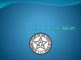 30.4    The Texas Judiciary