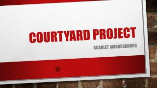 Courtyard Project