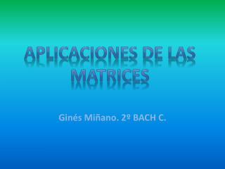 Ginés Miñano. 2º BACH C.