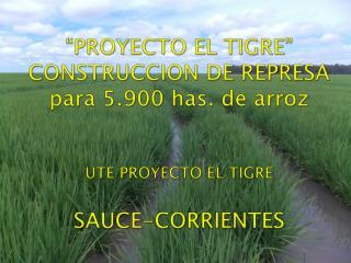 Presentación: PROYECTO EL TIGRE SAUCE, CTES.