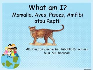 What am I? Mamalia, Aves, Pisces, Amfibi atau Reptil