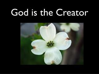 God is the Creator