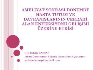 GÜLİSTAN KASSAP İnönü Üniversitesi Yüksek Lisans Proje Çalışması gulistankassap @ hotmail