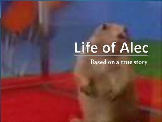 Life of Alec